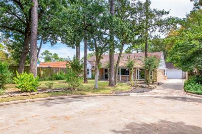 Houston Single Family Home For Sale: 10115 Tiara Lane