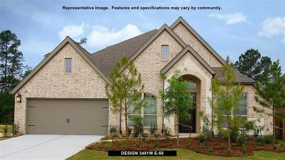 Missouri City Single Family Home For Sale: 3239 Shawdow View Lane
