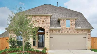 Fulshear Single Family Home For Sale: 2518 Lilac Point Lane