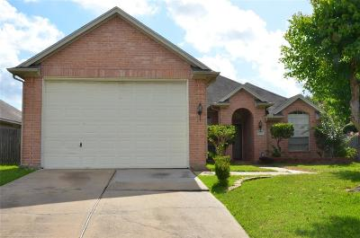 Stafford, Stafford Texas Single Family Home For Sale: 543 Jays Lane