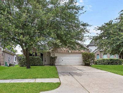Houston Single Family Home For Sale: 2518 Forge Creek Road