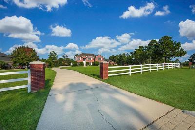 Montgomery Single Family Home For Sale: 11410 E Connie Lane