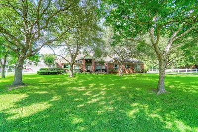 Katy Single Family Home For Sale: 3019 S Saddlebrook Lane