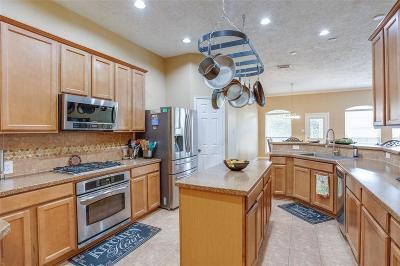 Houston Single Family Home For Sale: 13406 Popes Creek Lane