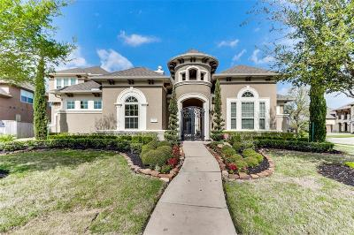 Katy Single Family Home For Sale: 28515 Tall Juniper Hill Drive