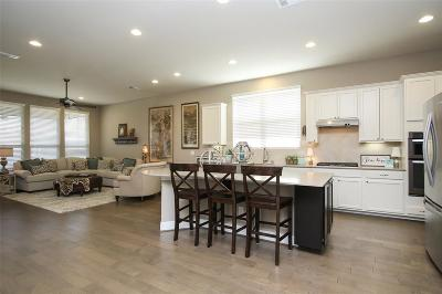 Single Family Home For Sale: 261 Palomino Court