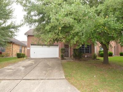 Houston Single Family Home For Sale: 1234 Coppermeade Drive