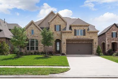Friendswood Single Family Home For Sale: 1528 Richland Hollow Lane