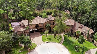 Bunker Hill Village Single Family Home For Sale: 25 Greyton Lane