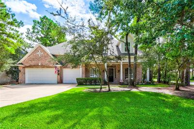 The Woodlands Single Family Home For Sale: 19 Argonne Place