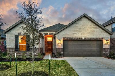Magnolia Single Family Home For Sale: 10083 Cimarron Canyon Lane