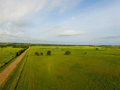 Schulenburg TX Farm & Ranch For Sale: $225,000