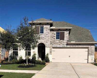 Fulshear Single Family Home For Sale: 30310 Iris Circle Court