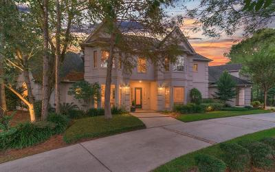 The Woodlands Single Family Home For Sale: 35 S Taylor Point Drive