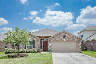 Conroe Single Family Home For Sale: 9938 Tulip Street