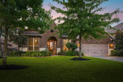 Spring Single Family Home For Sale: 9614 Kirkstone Terrace Drive