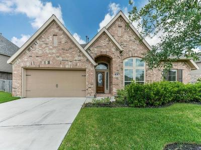 Pearland Single Family Home For Sale: 1902 Cayman Bend Lane