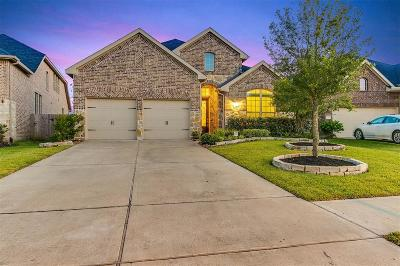 Fort Bend County Single Family Home For Sale: 19755 Terrazza Lake Lane