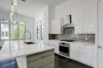 Houston Single Family Home For Sale: 610 Reinicke Street