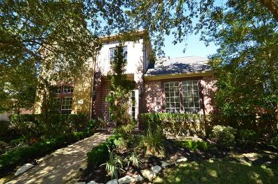 Katy Single Family Home For Sale: 22622 Arbor Stream Drive