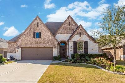 Fulshear Single Family Home For Sale: 4715 Trickle Creek Court
