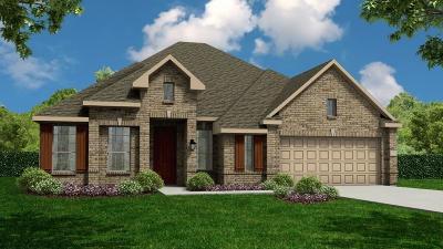 Katy Single Family Home For Sale: 28018 Hawkeye Ridge Lane