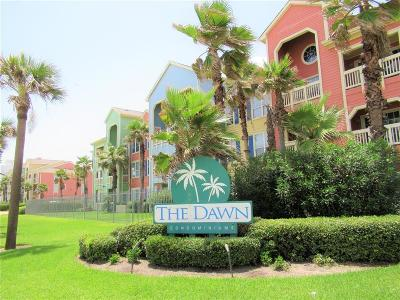 Galveston Condo/Townhouse For Sale: 7000 Seawall Boulevard #411