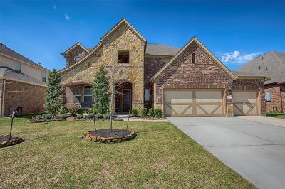 League City Single Family Home For Sale: 1526 Ballinger Creek Lane