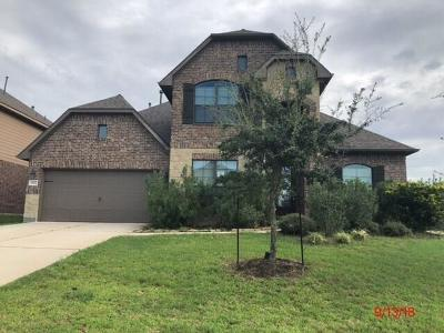 Tomball Single Family Home For Sale: 20922 Warwickshire Drive