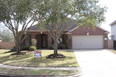 Sugar Land Single Family Home For Sale: 1231 Deerbrook Drive