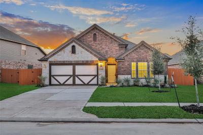 Spring Single Family Home For Sale: 4544 New Country Drive