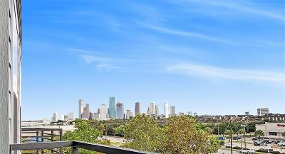 Houston Heights Condo/Townhouse For Sale: 1011 Studemont #308