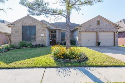 Friendswood Single Family Home For Sale: 3523 Misty View Lane