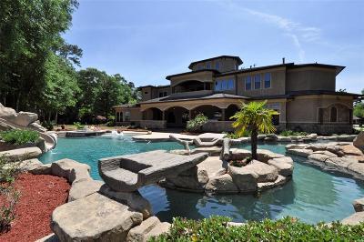 Spring Single Family Home For Sale: 28202 E Benders Landing Boulevard