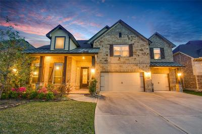 Humble Single Family Home For Sale: 12910 Wickerhill Falls Court