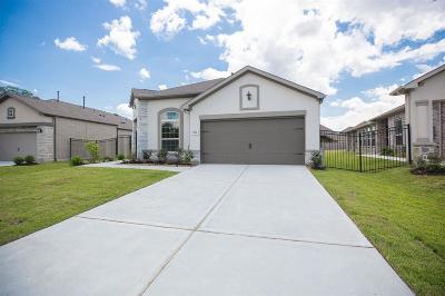 Porter Single Family Home For Sale: 5122 Andorra Bend Lane