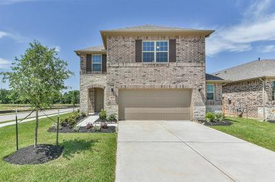 Fulshear Single Family Home For Sale: 5122 Windy Plantation Drive