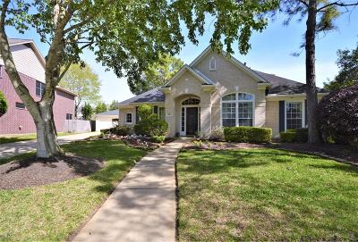 Houston Single Family Home For Sale: 4019 Meadow Grove Trail