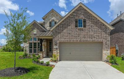 Manvel Single Family Home For Sale: 4204 Silver Spur Court