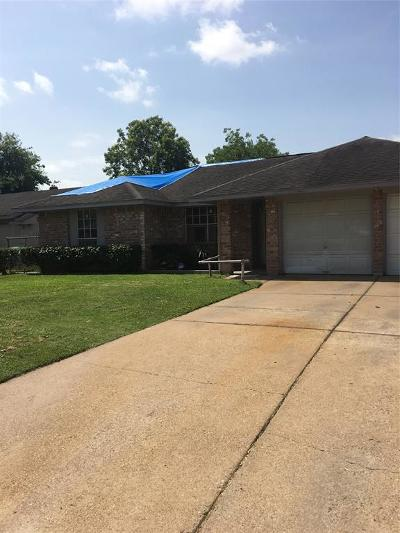 Houston Single Family Home For Sale: 1427 Fashion Hill Drive
