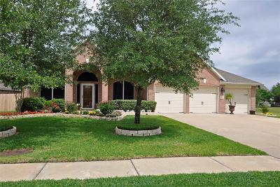 Houston Single Family Home For Sale: 17602 Quiet Loch Lane