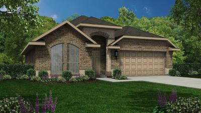 Alvin Single Family Home For Sale: 5171 Dry Hollow