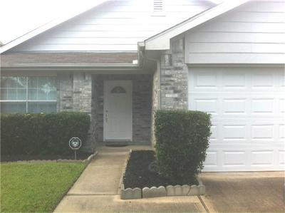 Houston Single Family Home For Sale: 9503 Eaglewood Spring Drive