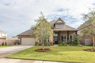 Dickinson Single Family Home For Sale: 1732 Oakdale Mist Drive