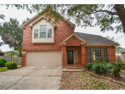 Sugar Land Single Family Home For Sale: 807 Featherbrook Court