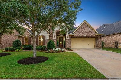 Single Family Home For Sale: 27402 N Saddle Creek Lane