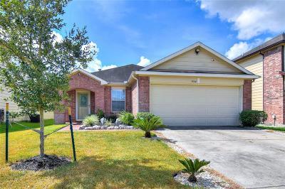 Single Family Home For Sale: 9038 Blue Cedar Lane