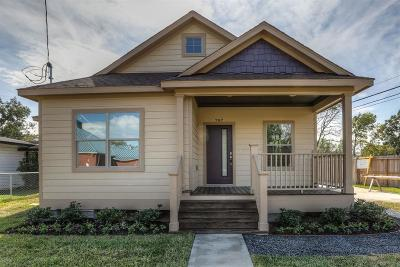 Houston Single Family Home For Sale: 797 Millville Drive