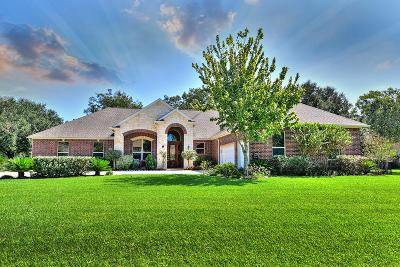 Fulshear Single Family Home For Sale: 4110 Westerdale Drive