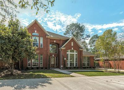 Harris County Single Family Home For Sale: 11909 Barryknoll Lane